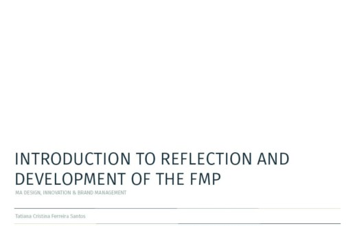 Introduction to reflection and development of the FMP